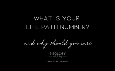 What Is Your Life Path Number & Why Should You Care?