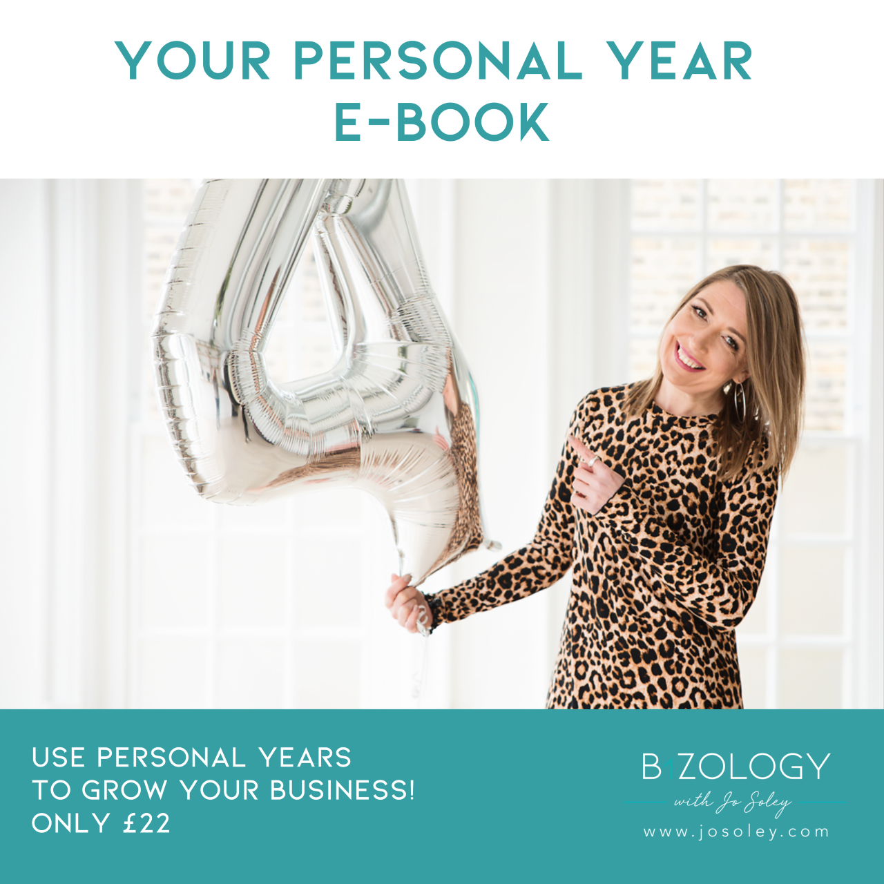 Personal Year ebook