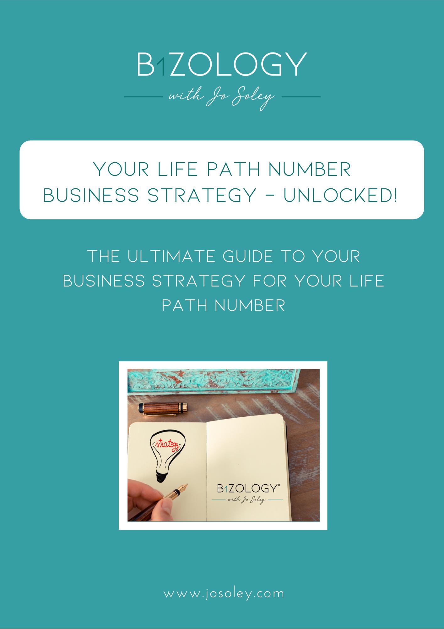 Life Path Biz Strategy Ebook